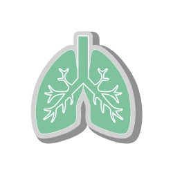 whole life insurance for smokers lungs